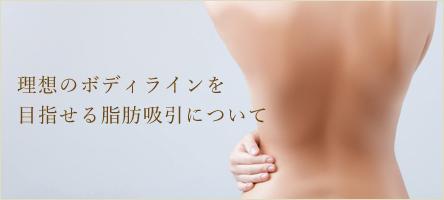 理想のボディラインを目指せる脂肪吸引について