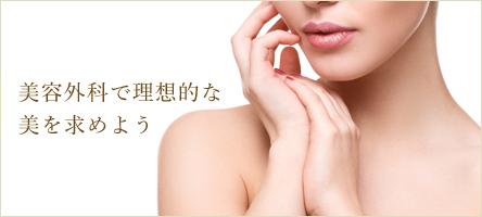 美容外科で理想的な美を求めよう